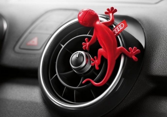 Gecko Audi